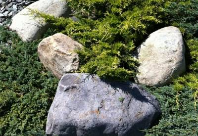 Welsh Quartz Boulders 200-400mm